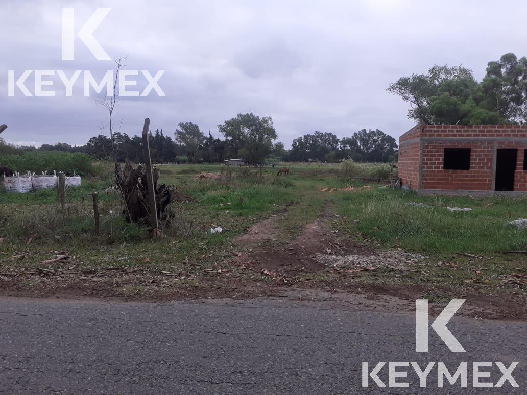 Foto Campo en Venta en  Villa Parque Sicardi,  La Plata  643 esquina 10