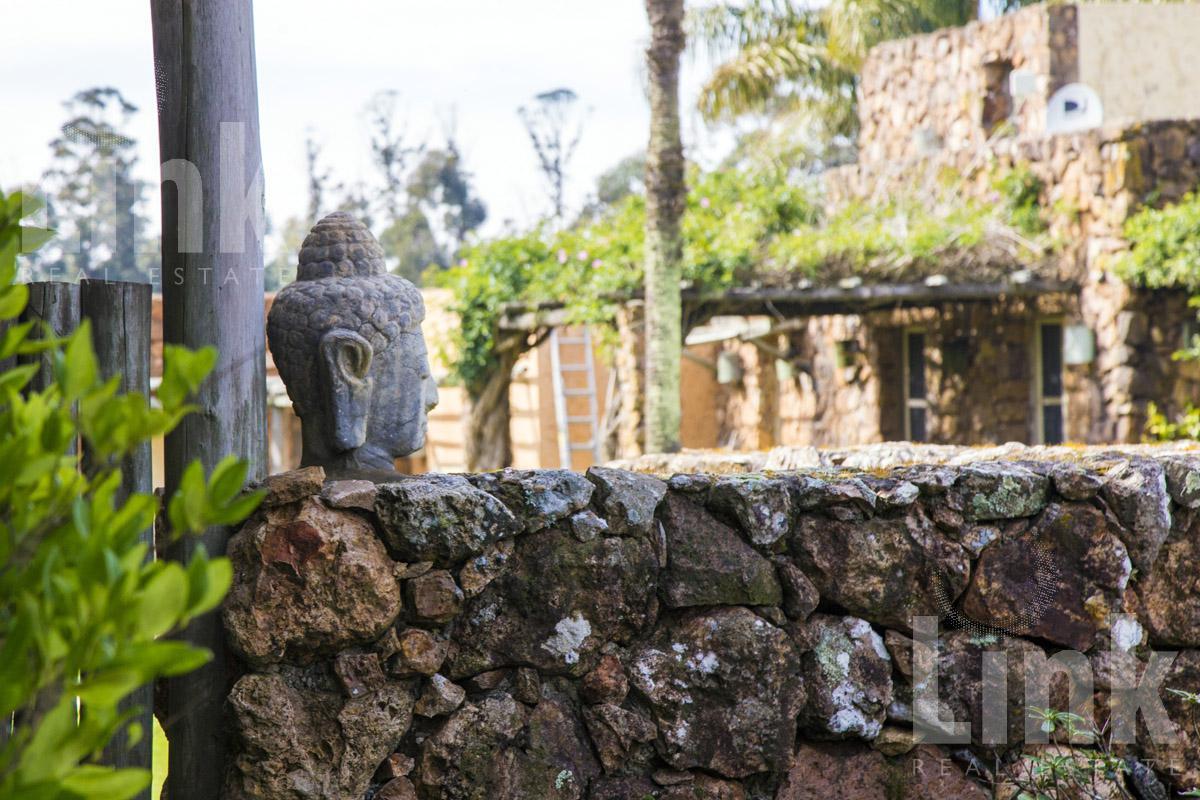Foto Chacra en Venta en  Punta Piedras,  Manantiales  Punta Piedras