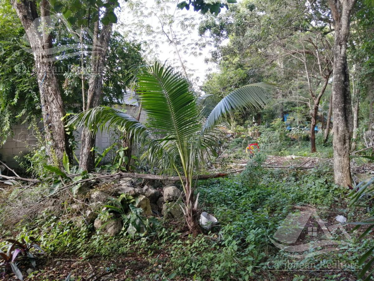 Foto Terreno en Venta en  Tulum ,  Quintana Roo  Tulum