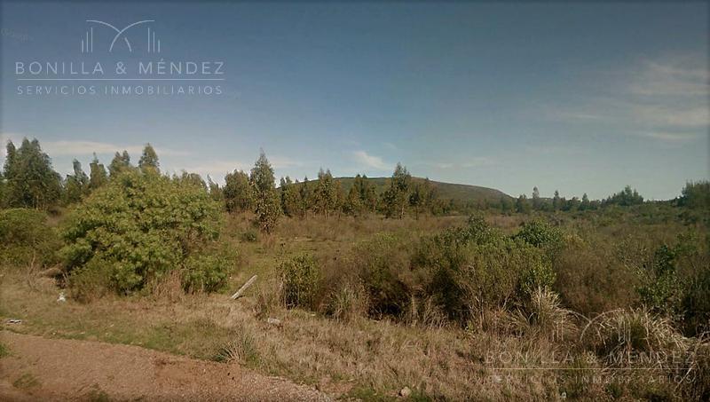 Foto Campo en Venta en  Piriápolis ,  Maldonado  Ruta 73 casi 37