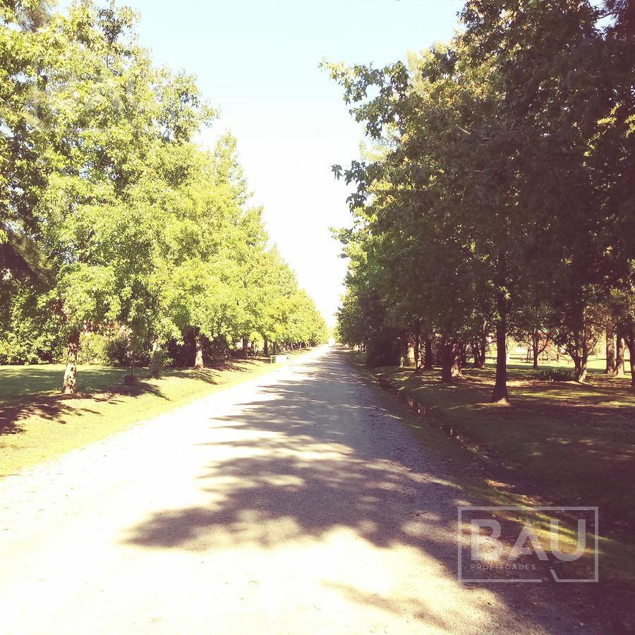 Foto Terreno en Venta en  San Joaquin,  Countries/B.Cerrado (Exaltación)  Ruta 39