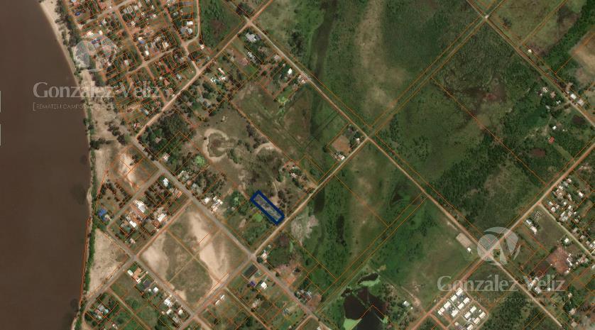 Foto Terreno en Venta en  Nueva Palmira ,  Colonia  San Salvador entre Rondeau y San Martin -Nueva Palmira