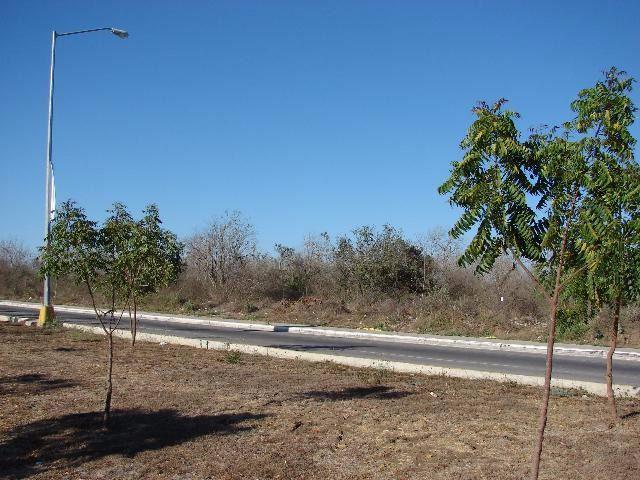 Foto Terreno en Venta en  Fraccionamiento Prado Bonito,  Mazatlán  Terrenos en Ventas Mazatlán | Terreno Comercial en Venta