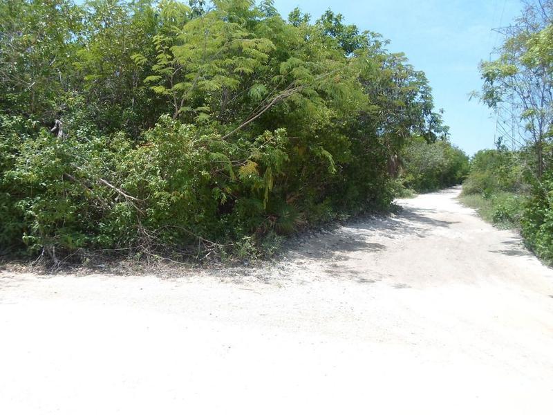 Foto Terreno en Venta en  Cancún,  Benito Juárez  Se Vende Terreno con Cenote en Rivera Maya y Tulum