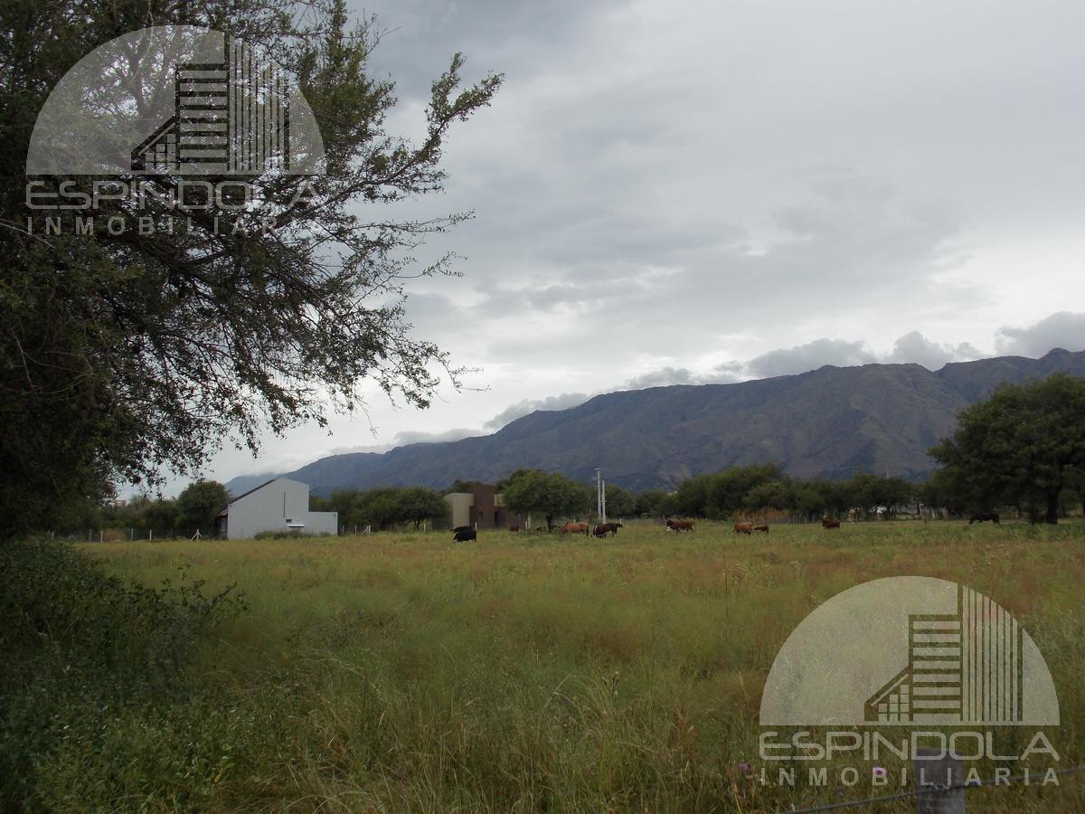 Foto Campo en Venta en  Merlo,  Junin  Rodeo de Los Cocos al 1000