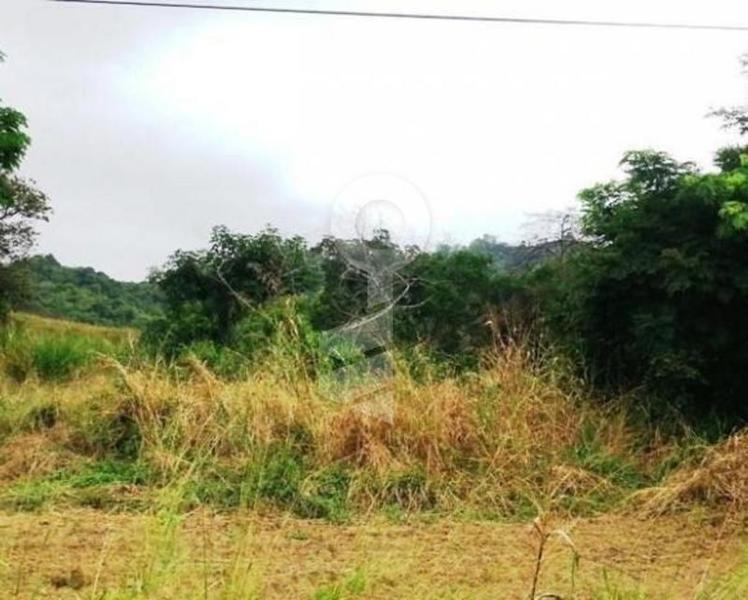 Foto Terreno en Venta en  Vía a la Costa,  Guayaquil  VENTA DE TERRENO DE OPORTUNIDAD  EN KM 36 VIA A LA COSTA