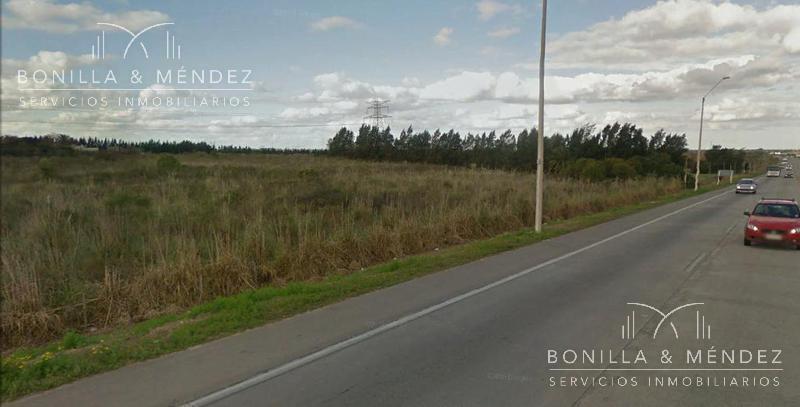 Foto Campo en Venta en  Colón ,  Montevideo  Ruta al 100