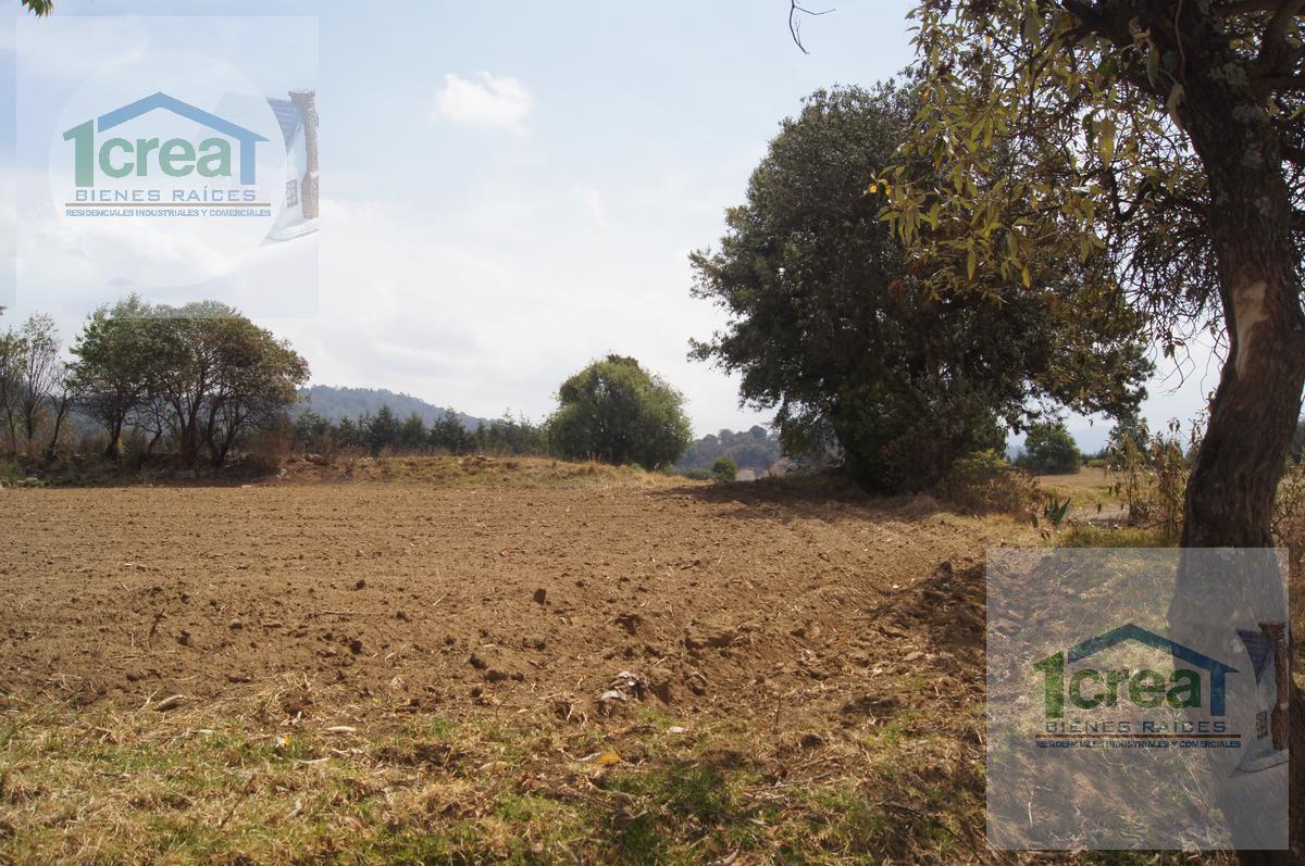 Foto Terreno en Venta en  San Miguel Ameyalco,  Lerma  Carretera Toluca Terreno Venta