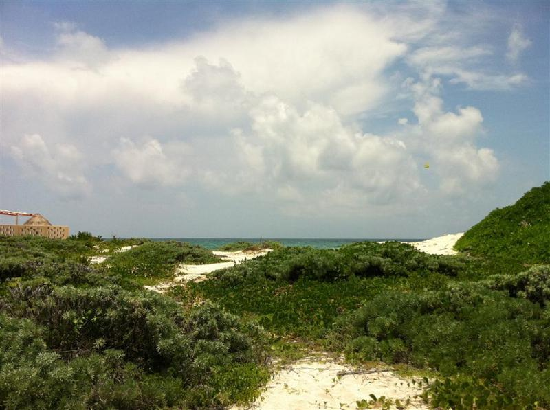 Puerto Morelos Land for Sale scene image 3