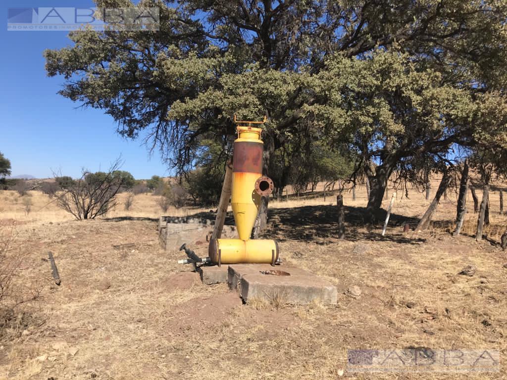 Foto Terreno en Venta en  Guerrero ,  Chihuahua  TRRENO EN VENTA EN CD. GUERRERO