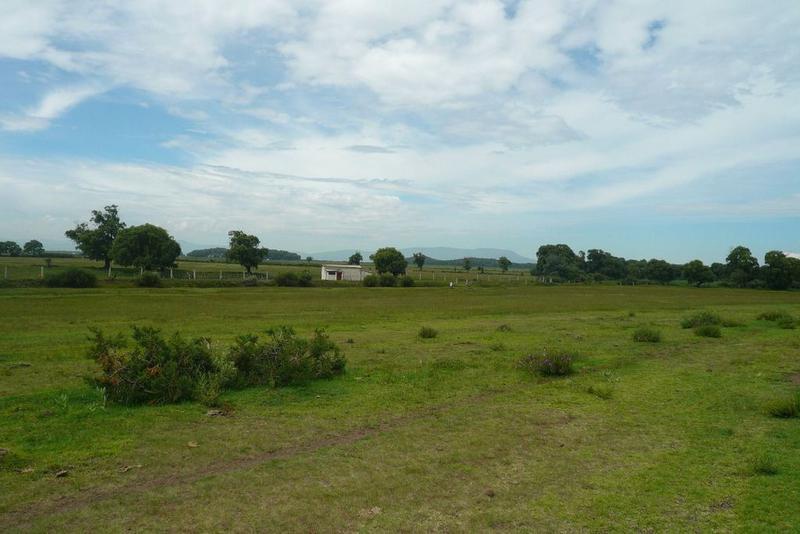 Foto Terreno en Venta en  Pueblo San José de Chiapa,  San José Chiapa  PUEBLA, SAN JOSÉ CHIAPA, Terreno Industrial, 500ha, cercano a AUDI