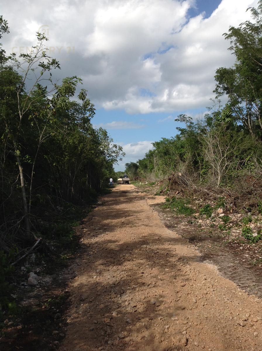 Foto Terreno en Venta en  Benito Juárez ,  Quintana Roo  En Venta 74 hectareas muy cerca de cancun  C2646