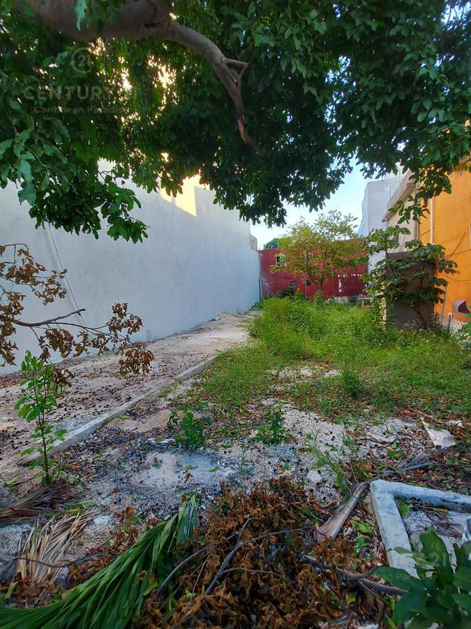 Playa del Carmen Land for Sale scene image 1