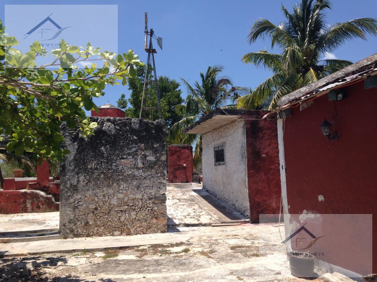 Foto Finca en Venta en  Temax ,  Yucatán  Finca en Venta Santa Rita Temax