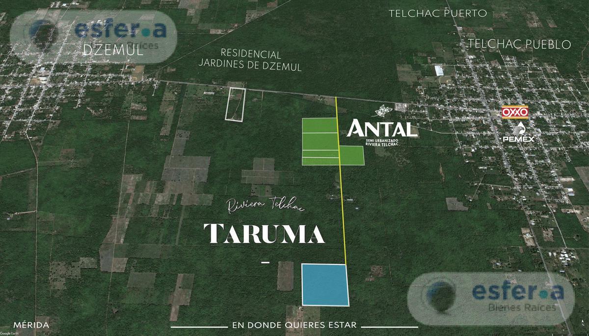 Foto Terreno en Venta en  Pueblo Telchac Puerto,  Telchac Puerto  Terrenos de Inversión Plus En Venta en Telchac Puerto