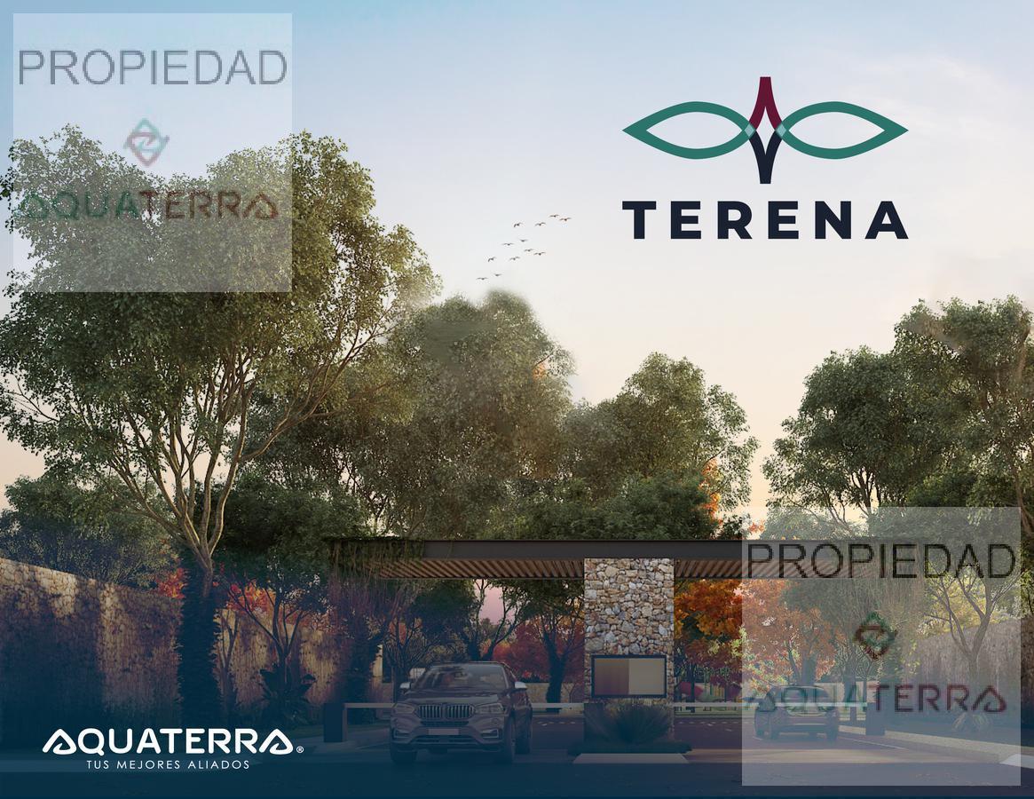 Preventa Lotes Residenciales en Temozón Norte Terena