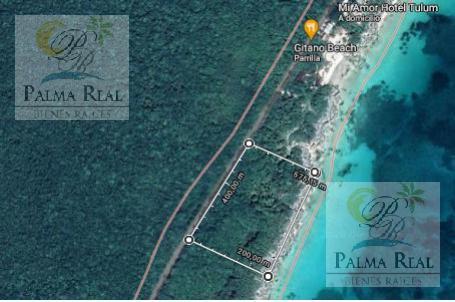 Foto Terreno en Venta en  Tulum ,  Quintana Roo  TERRENO TULUM EN ZONA HOTELERA CON VISTA FRENTE A LA PLAYA