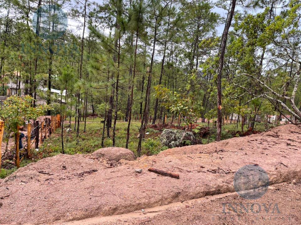 Foto Terreno en Venta en  Valle de Angeles ,  Francisco Morazán  Terreno En Venta 1000 vras Villa NapoliValle de Angeles Honduras