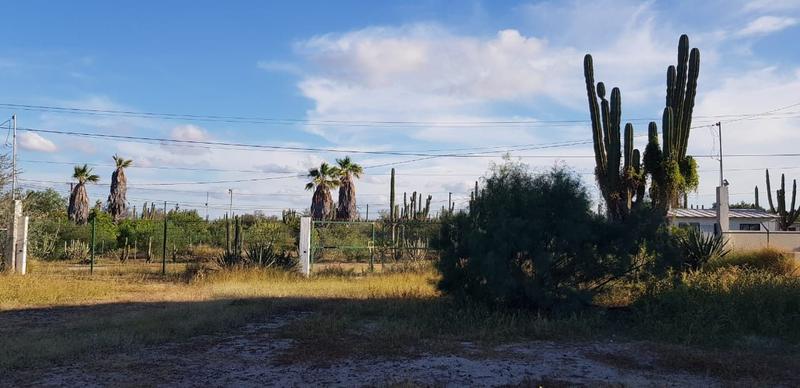 Foto Terreno en Venta en  Comitán,  La Paz  LOTE COMITAN