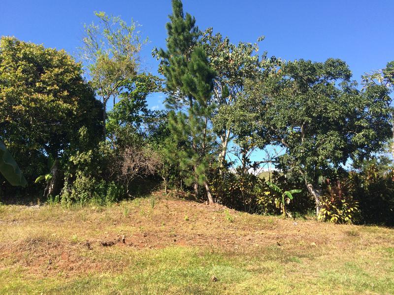 Foto Terreno en Venta |  en  Colon,  Mora  SE VENDE LINDO TERRENO EN URBANIZACION, 100% NATURALEZA. EL RODEO. FC