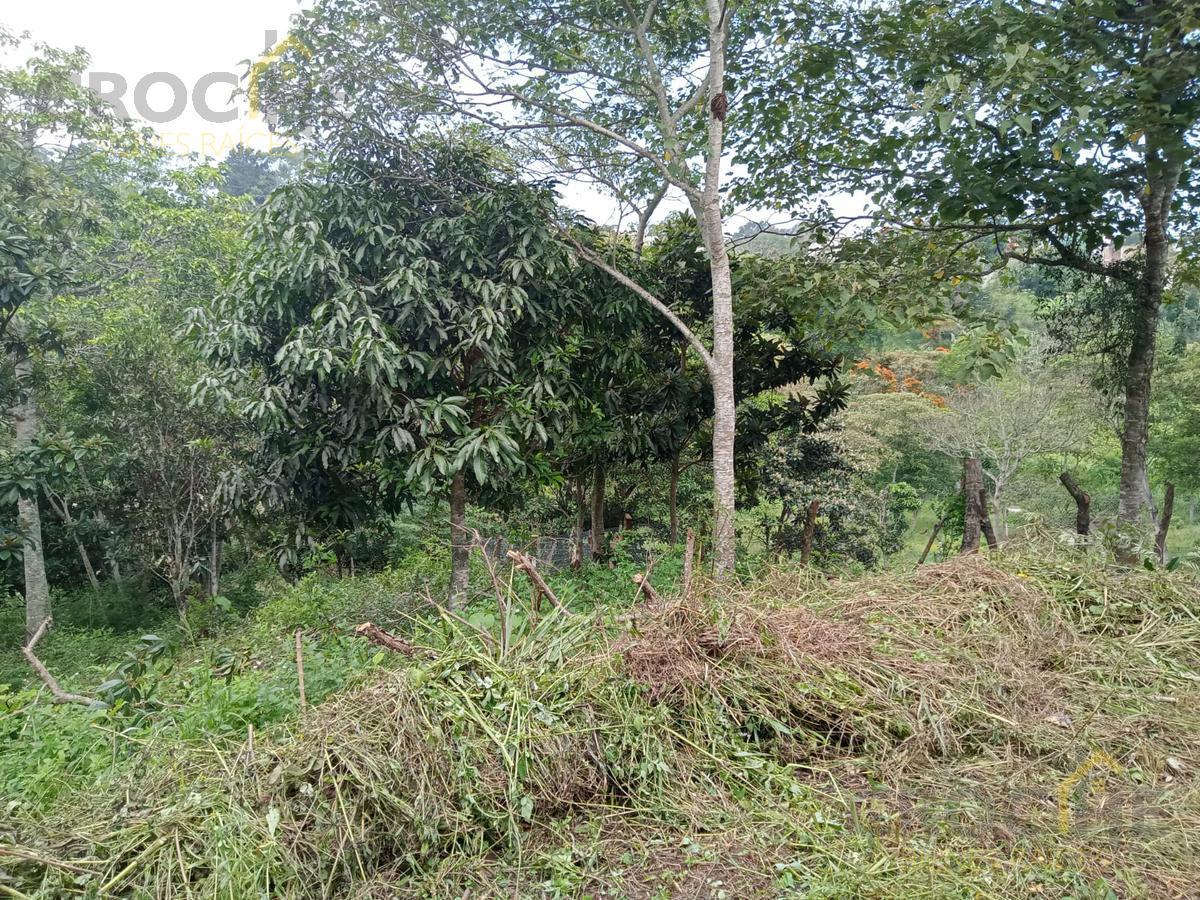 Foto Terreno en Venta en  Xalapa ,  Veracruz  Venta de terreno en zona Animas cercano a la Av. Chedraui Caram y calle Prol. Sebastian Bach