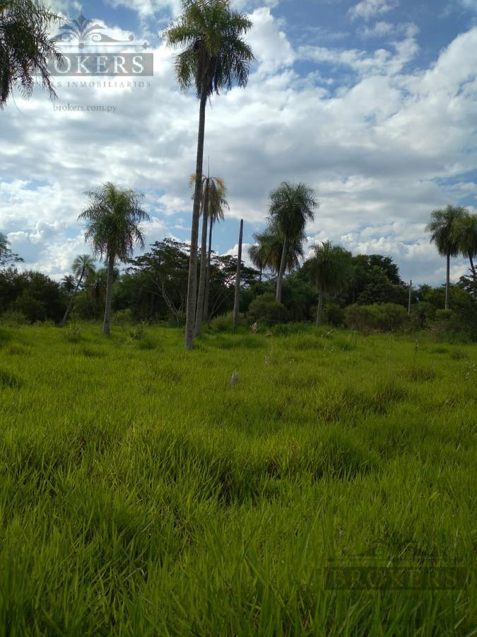 Foto Terreno en Venta en  Yaguarón ,  Paraguarí  Vendo 11,6 has en 4 lotes zona Yaguaron - Paraguari - Ita Potrero