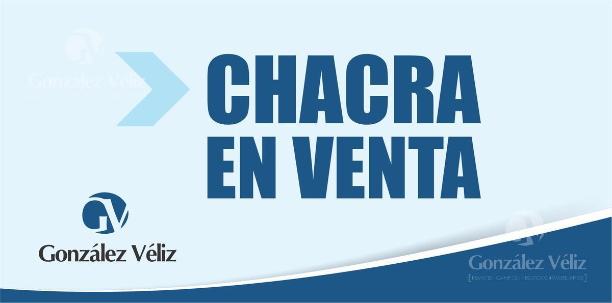 Foto Chacra en Venta en  Carmelo ,  Colonia  Chacra de 5,88 hectáreas ubicada en Cerro de Carmelo