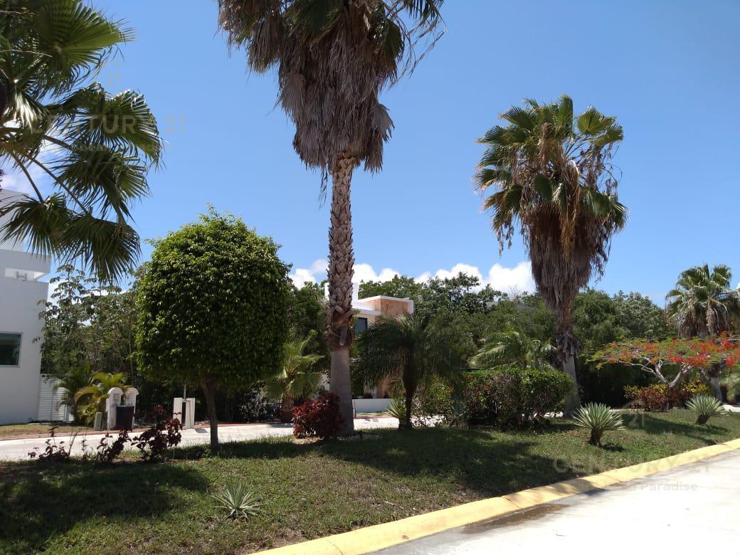 Playa del Carmen Casa for Alquiler scene image 37
