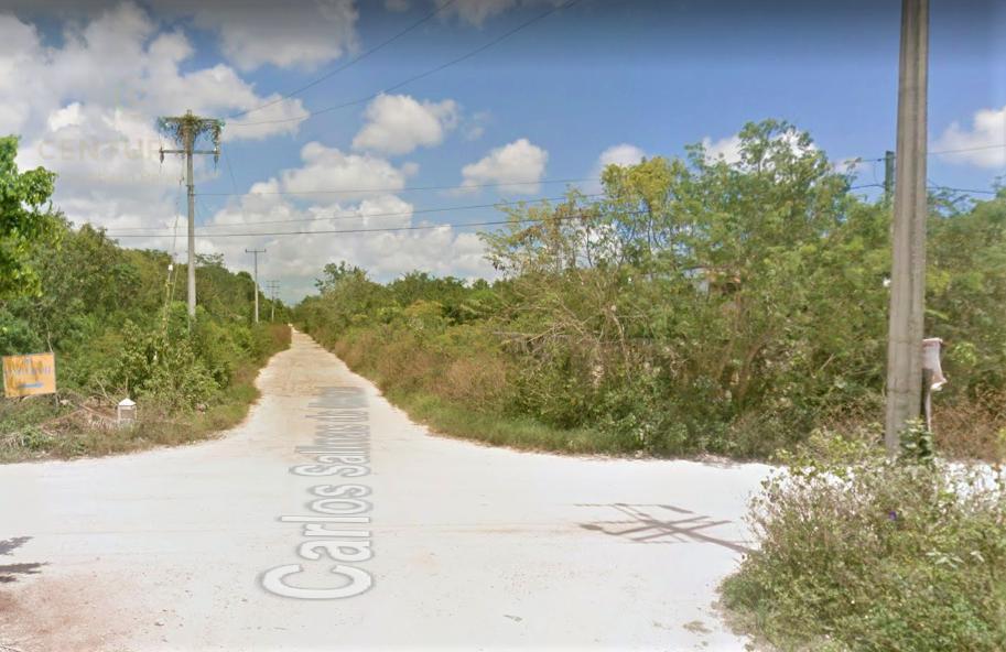 Cancún Land for Sale scene image 8