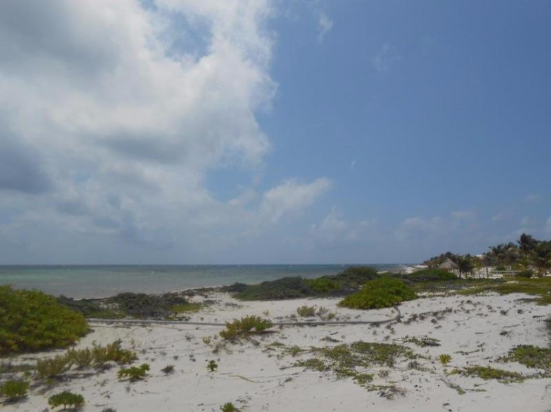 Mahahual Land for Sale scene image 7