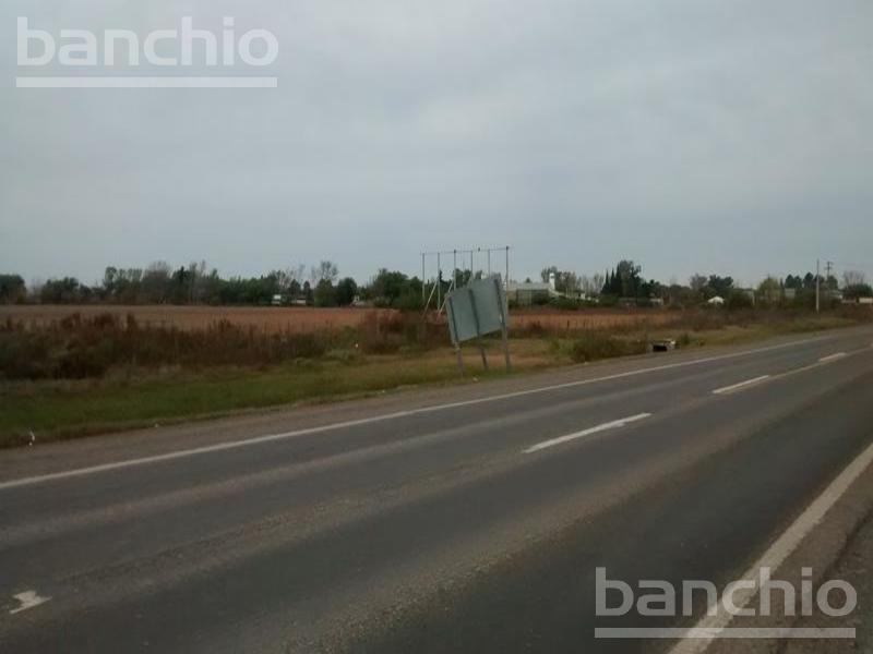 Ruta 18 casi AO12    , Alvear, Santa Fe. Venta de División campos - Banchio Propiedades. Inmobiliaria en Rosario