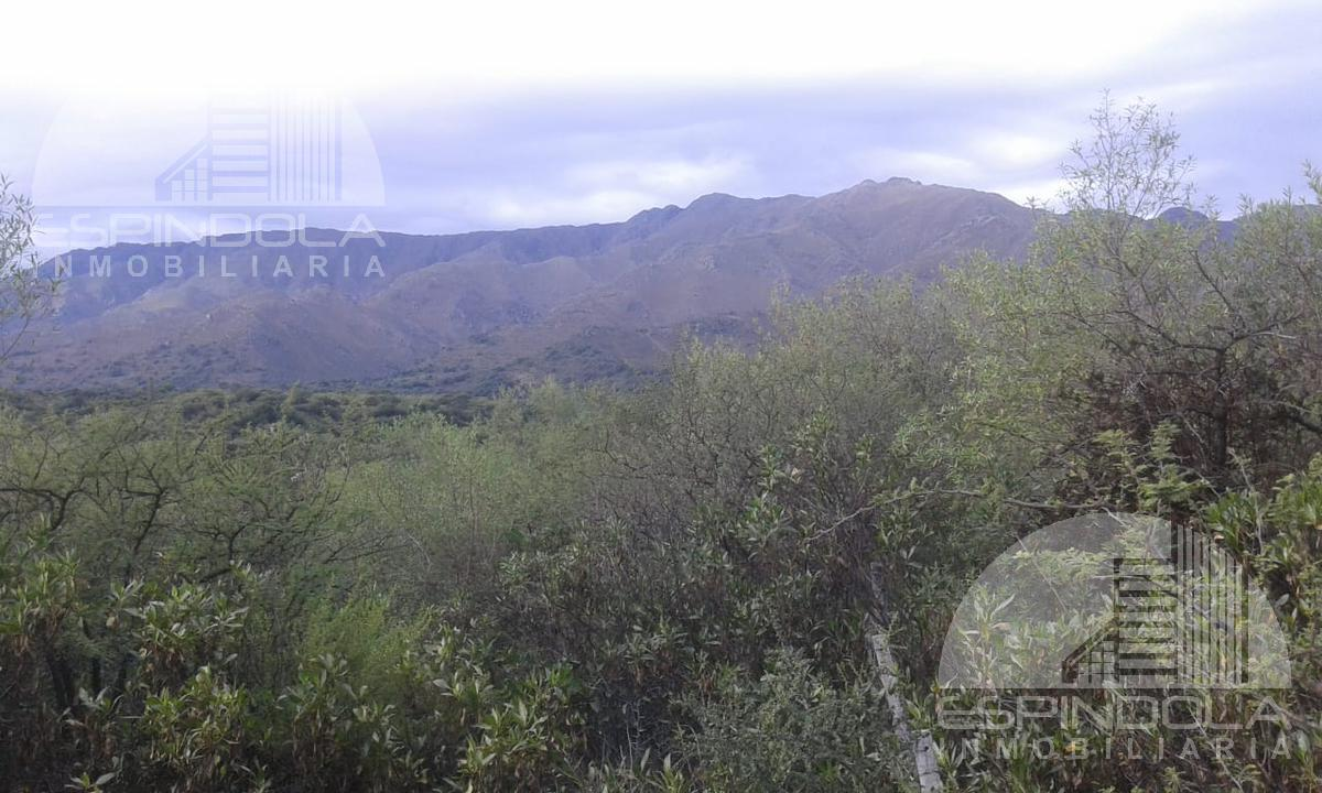 Foto Terreno en Venta en  Piedra Blanca Arriba,  Merlo  Av de Los Incas
