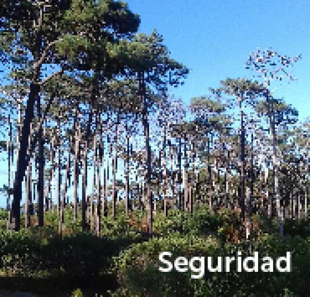 Foto Terreno en Venta en  Montoya,  La Barra  La Reserva al 200