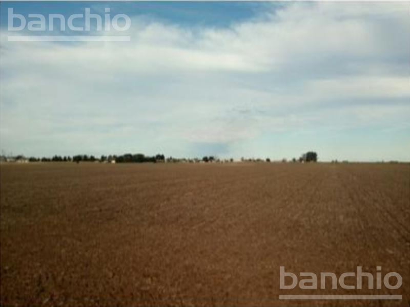 25 ha Agricolas en Coronel Arnold    , Coronel Arnold, Santa Fe. Venta de División campos - Banchio Propiedades. Inmobiliaria en Rosario