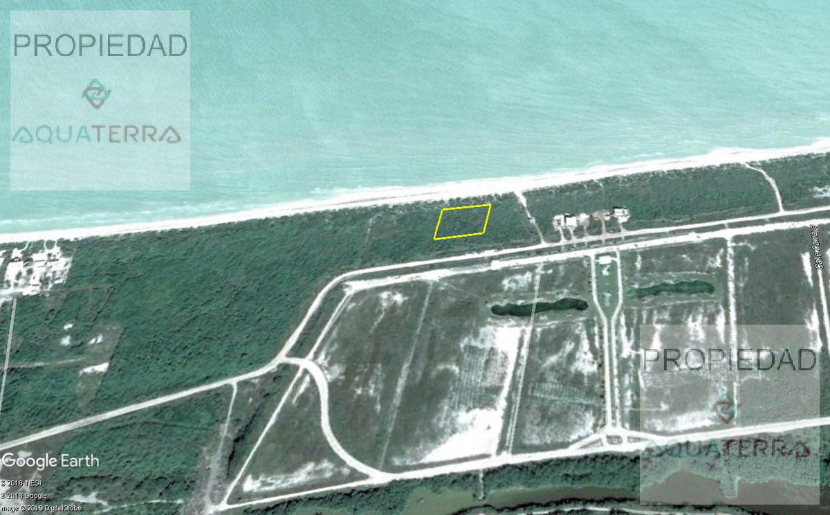 Sisal Terrenos desde 10 ML Frente al Mar