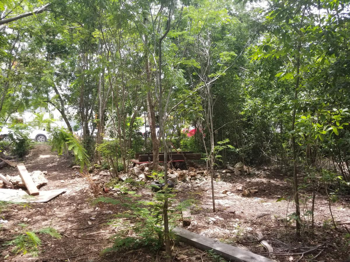 Fraccionamiento Encuentro Terreno for Venta scene image 3