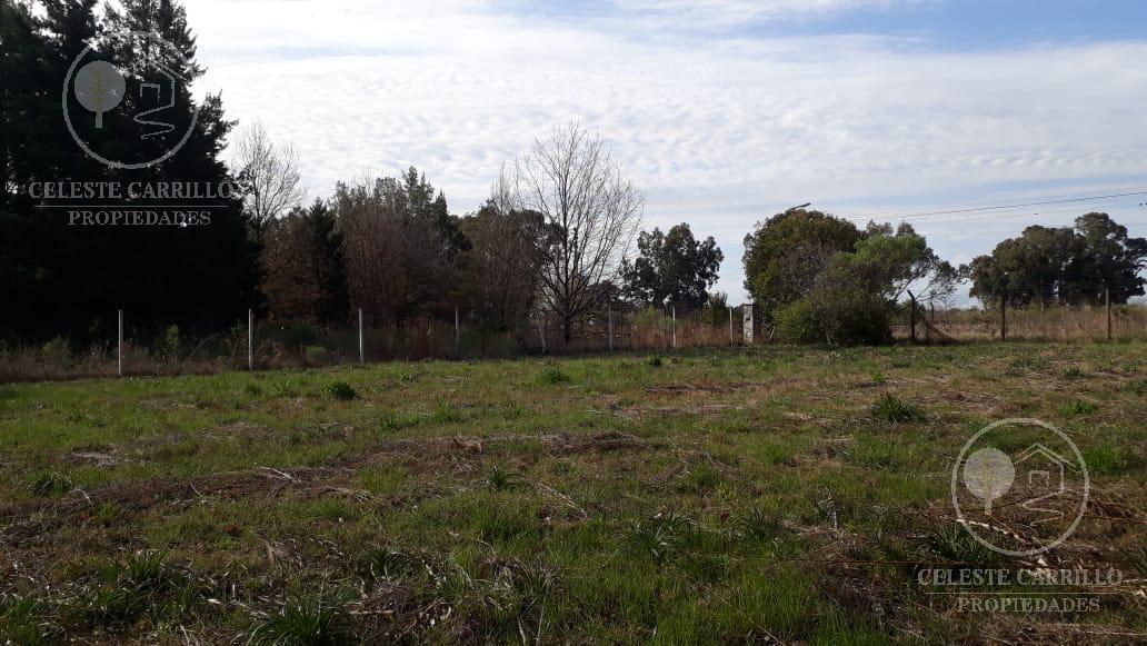 Foto Terreno en Venta en  La Verdad,  Capilla Del Señor  Colectora ruta 39