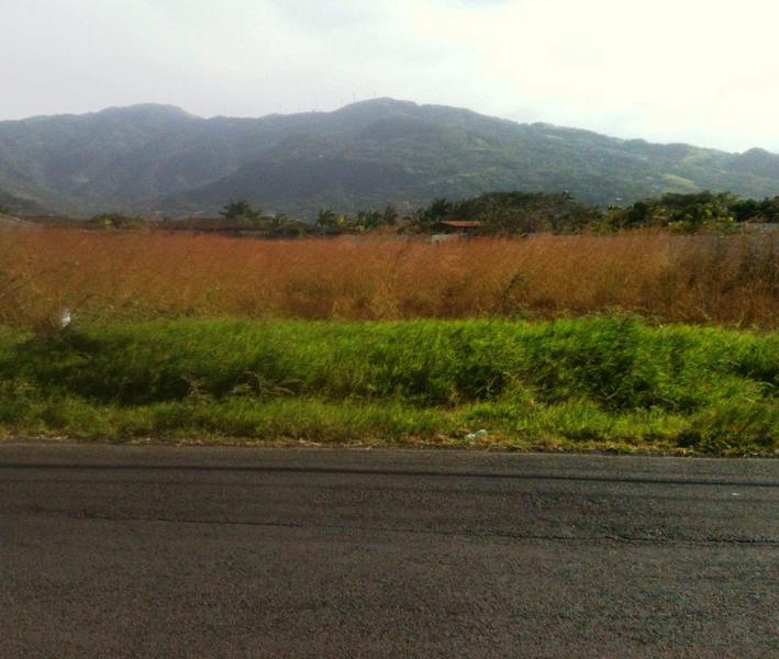 Foto Terreno en Venta |  en  Pozos,  Santa Ana  Lote para uso resindencial el Lindora