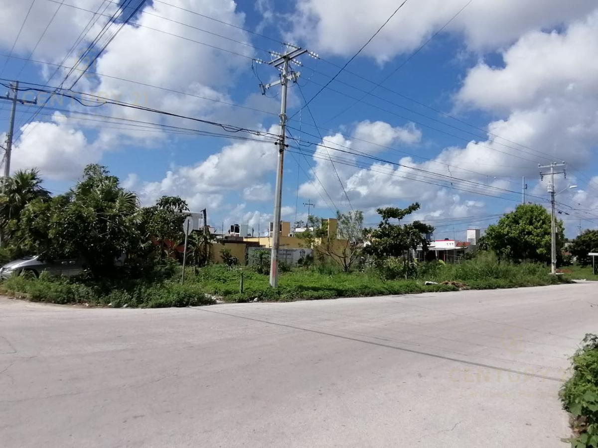 Benito Juárez Land for Sale scene image 4