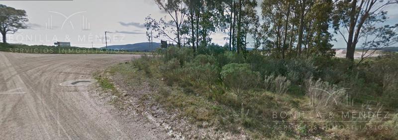 Foto Campo en Venta en  Pan de Azúcar ,  Maldonado  Ruta 9 Vieja y camino al km110 Pan de Azúcar