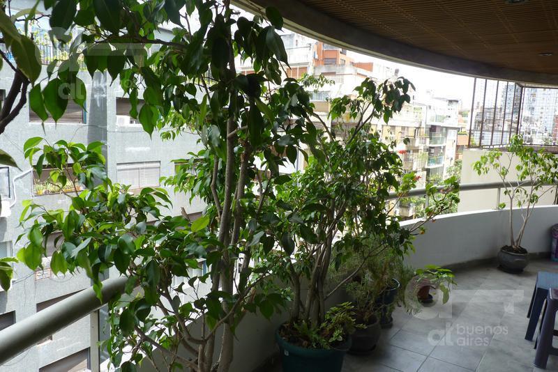 Foto Departamento en Alquiler temporario en  Botanico,  Palermo  Juncal y Salguero