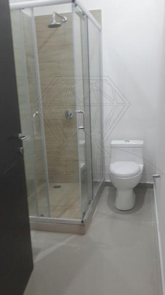 Foto Departamento en Renta en  Condesa,  Cuauhtémoc  col. Condesa, Sinaloa,  departamento amueblado en renta (LG)