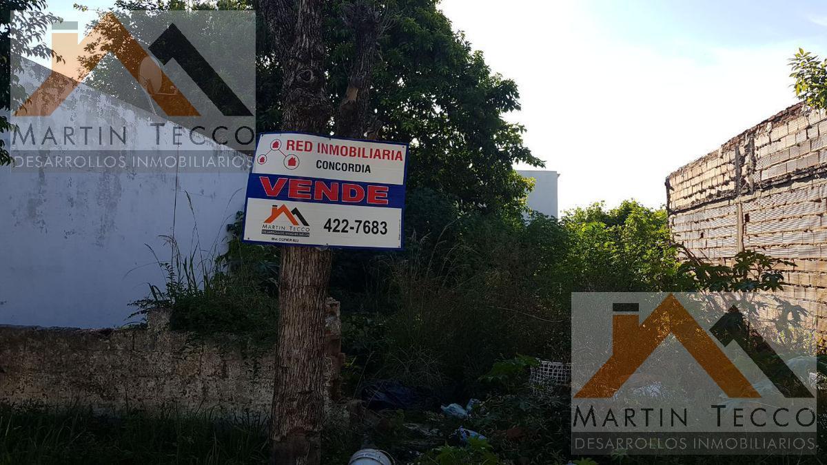 Foto Terreno en Venta en  Concordia,  Concordia  Colon N°772