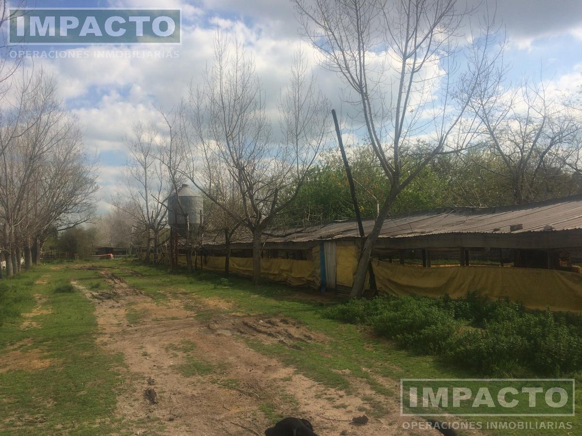 Foto Campo en Venta en  Marcos Paz ,  G.B.A. Zona Oeste  Granja de Pollos  Parrilleros