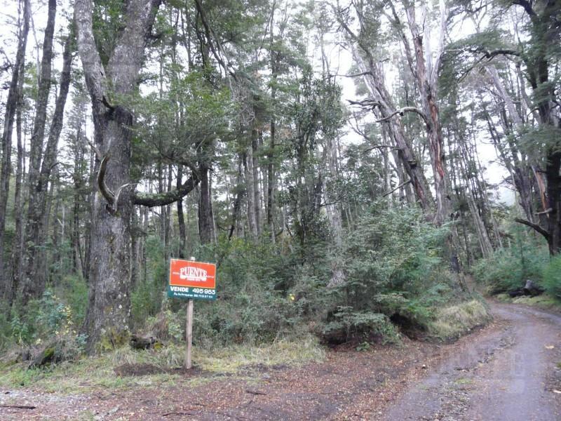 Foto Terreno en Venta en  Villa La Angostura ,  Neuquen  Faldeo del Bayo - Lote con bosque y arroyo ideal Turistico & Residencial