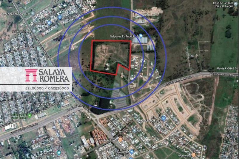Foto Terreno en Venta en  Maldonado ,  Maldonado  Venta terreno Punta del Este, zona Maldonado