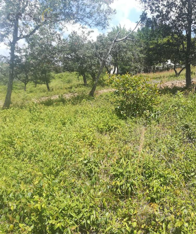 Foto Terreno en Venta en  Rancho o rancheria Plan Chico,  Emiliano Zapata  Terreno en venta en Plan Chico Emiliano Zapata zona Miradores