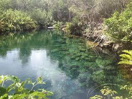 Tulum Land for Sale scene image 5