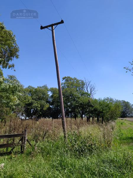 Foto Campo en Venta en  Cañuelas ,  G.B.A. Zona Sur  41 Ha. Cañuelas