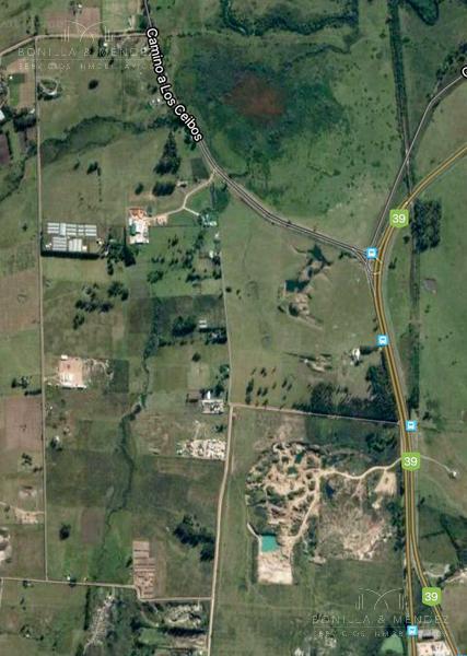 Foto Chacra en Venta en  Maldonado ,  Maldonado  Entre Cmno de los Ceibos y Ruta 39